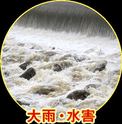 大雨・水害
